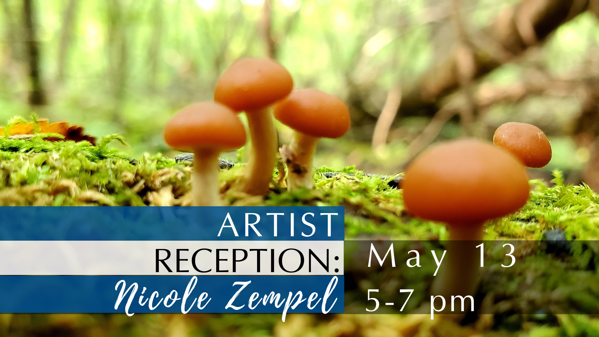 Background is a photograph Zempel took of mushrooms. Text: Artist Reception: Nicole Zempel, May 13, 5-7 pm.